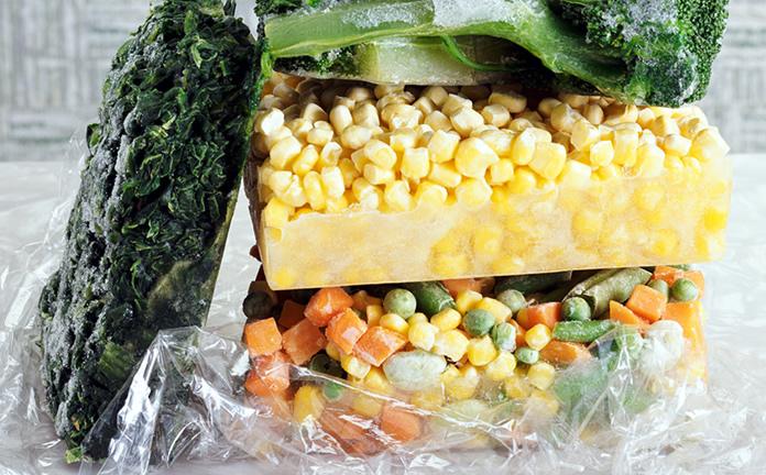 Veja como ganhar dinheiro vendendo comida congelada e também alimentos pré processados